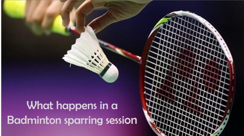 What is Badminton sparring